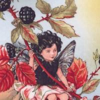 Autumn Fairies by Cicely Mary Barker