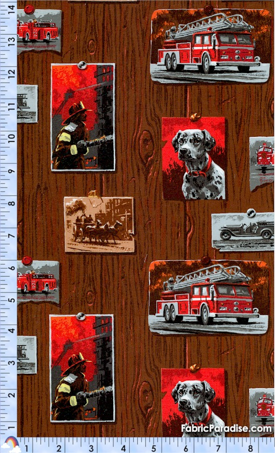 FIRE-rescue-X481