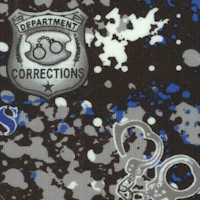 FIRE-corrections-R134