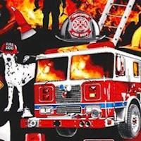 Fire Rescue Scenes on Black