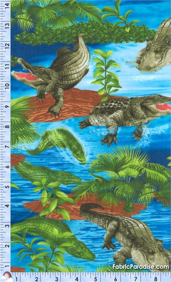 FISH-alligators-W991