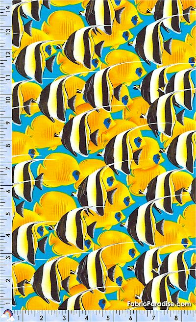 FISH-angelfish-L842