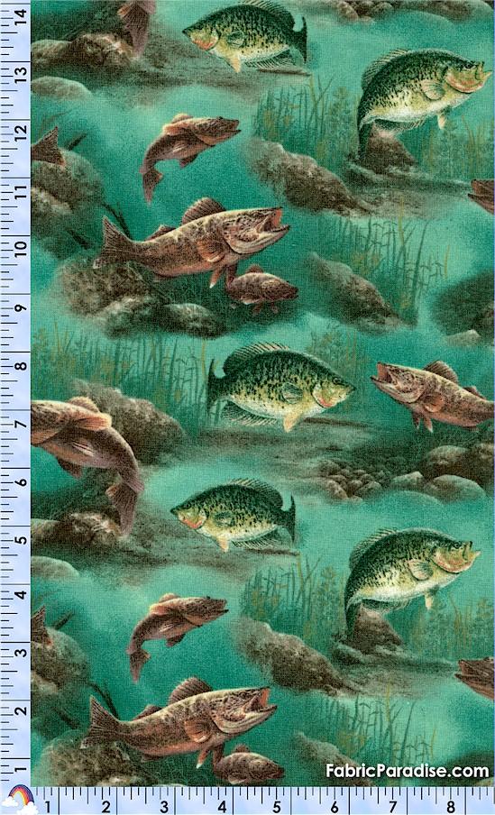 FISH-fish-X61