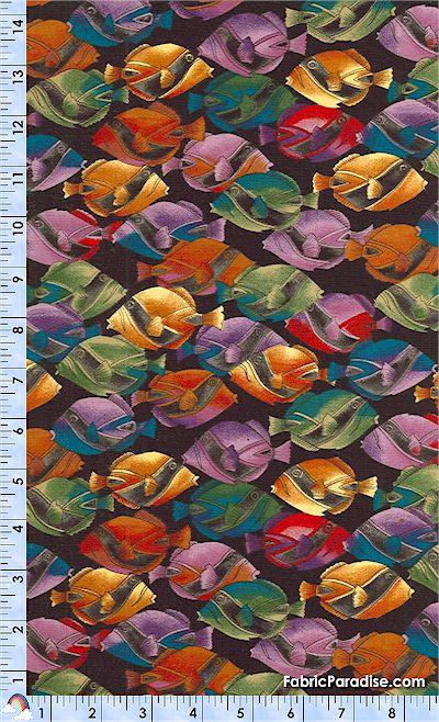 FISH-racoonfish-4