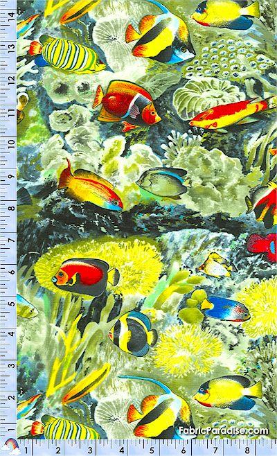 FISH-reef-M154