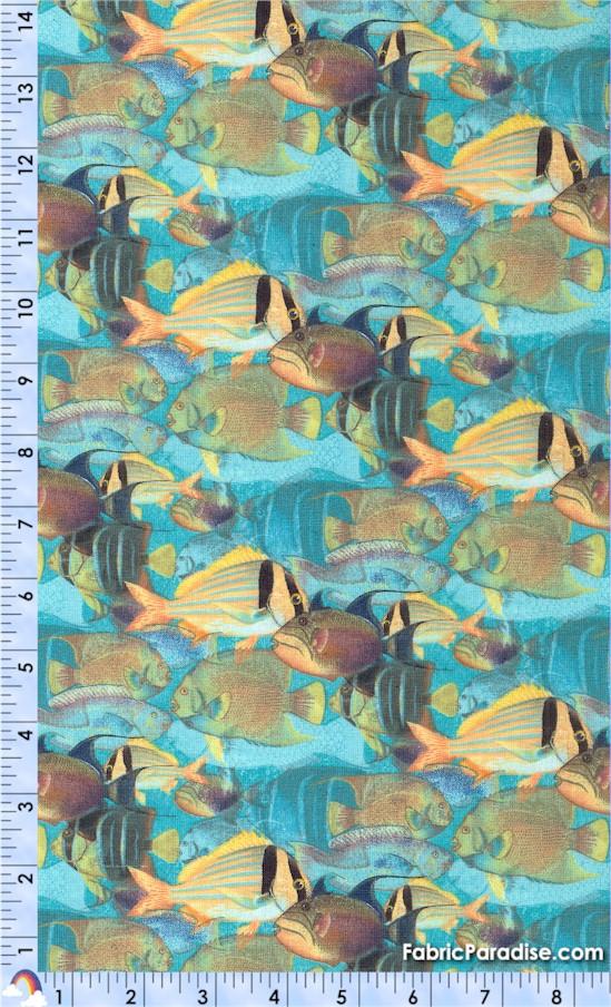 FISH-tropical-X564
