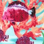 Aquatic - Under the Sea Scenes