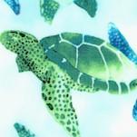 Aquatic - Watercolor Turtles