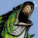FISH-bass-U599