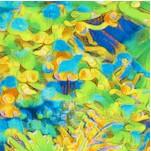 FISH-coralreef-Y145