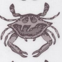 Crab Walk #1
