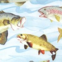 FISH-fish-R562