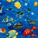FISH-fish-U310