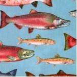FISH-fish-X316