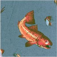 FISH-fish-Z776