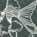 FISH-koi-U378