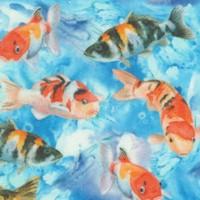 Koi Shuffle - Real Koi Watercolor #1