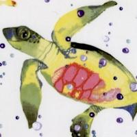 FISH-lakeside-R48