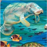 This & That IV - Beautiful Manatees, FIsh, Turtles and Seahorses