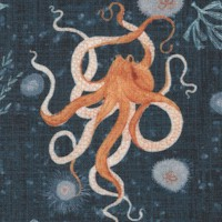 Whale Tales - Octopuses by Katherine Quinn