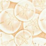 FISH-sanddollars-Y99