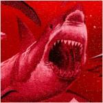 FISH-sharks-Y309