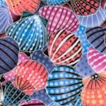 Way Under Seashells