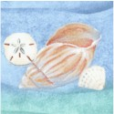 Sea of Tranquility - Seashells on Ocean by Samantha Rae