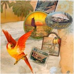Tropical Dreams - Island Wildlife and Maps by Kathleen Francour