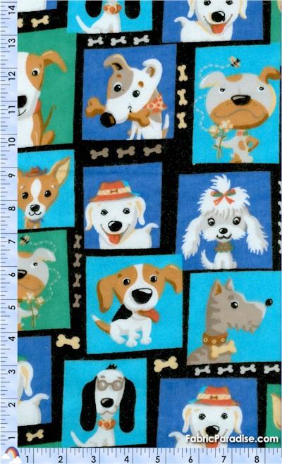FLA-dogs-F557