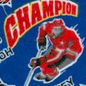 FLA-hockey-F548