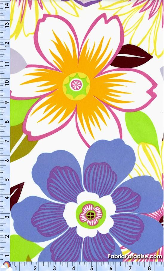 FLO-anemone-X641