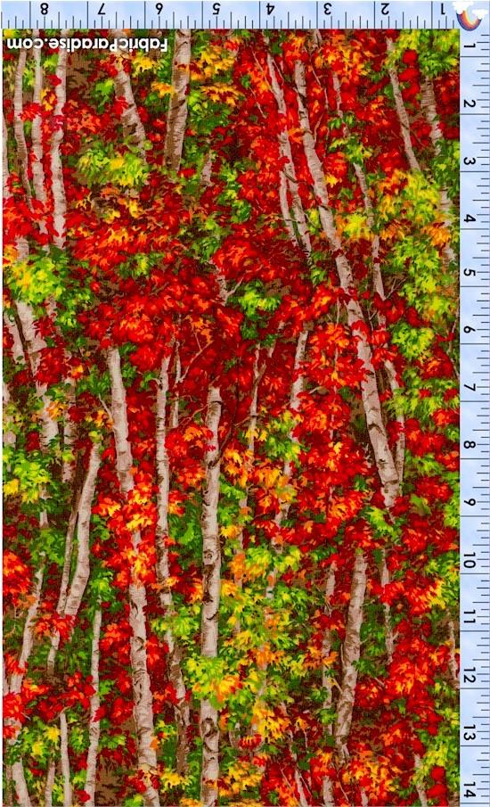 FLO-autumn-X671