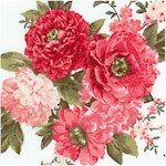 Beautiful Blossoms - Tossed Bouquets on Cream