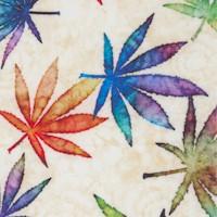 FLO-cannabis-R493