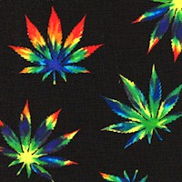 Blend - Psychedelic Cannabis Leaves on Black by Whistler Studios