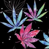 Cannabis Tie Dye on Black