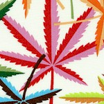 FLO-cannabis-X265