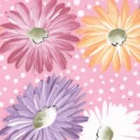 FLO-daisies-R695