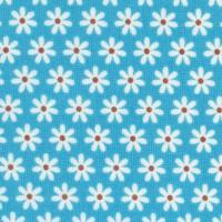 FLO-daisies-R860