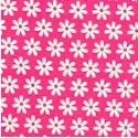 FLO-daisies-S8