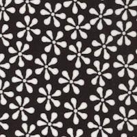 FLO-daisies-Z968