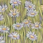 FLO-daisy-W79