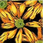 FLO-daisies-Y125