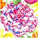 Garden Path - Brilliant Tossed Floral