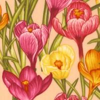 Botanica II Spring - Beautiful Crocuses by Color Principle