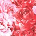 FLO-floral-S632