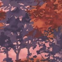 Textured Forest