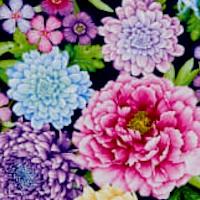 Gossamer Garden Beautiful Bouquets by Color Principle
