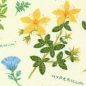 FLO-herbs-S694